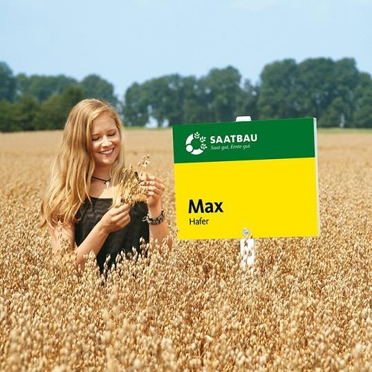 Max BG